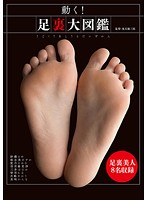 DOKS-390 動く!足裏大図鑑