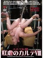 ADVO-118 肛虐のカルテVIII 瀬戸友里亜 甲斐ミハル