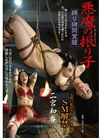 BDA-029 縛り拷問覚醒 悪魔の振り子 二宮和香