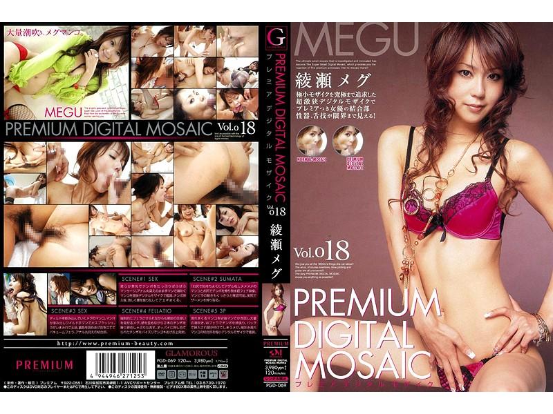 プレミアデジタルモザイク Vol.018 綾瀬メグ